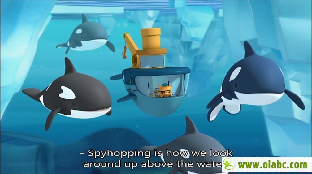 海底小纵队 Octonauts 英语版英文字幕 1-2季80集 儿童动画片 高清1080P