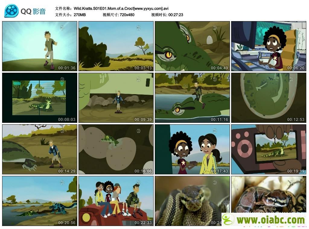 [英语无字幕]真人动画剧:动物兄弟 Wild Kratts 第一季第二季第三季