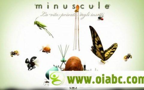 昆虫LIFE秀/昆虫小世界 Minuscule Season2 全98集 高清avi