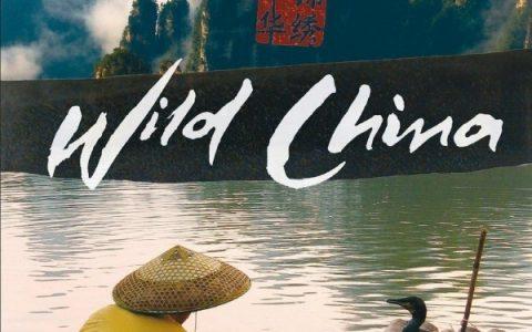 BBC纪录片: 美丽中国 Wild China 全6集 (国语英语配音 双语字幕) / 百度网盘